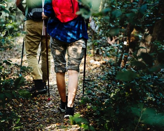 Best Hiking Trails in New York