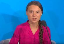 "Greta Thunberg's environmental activism earns ""alternative Nobel"""