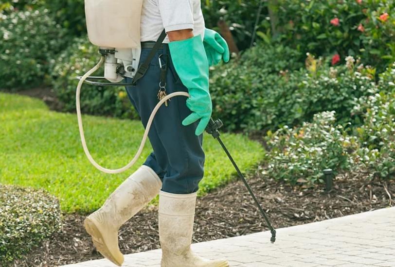 Jacob Termite & Pest Control Inc.