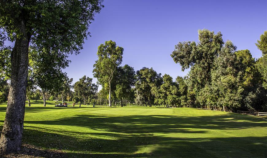 Wilson & Harding Golf Courses