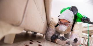 5 Best Pest Control Companies in San Jose