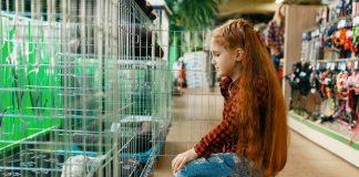 5 Best Pet Shops in Los Angeles