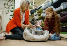 5 Best Pet Shops in New York