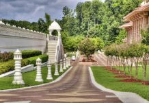 5 Best Landscaping Companies in Los Angeles
