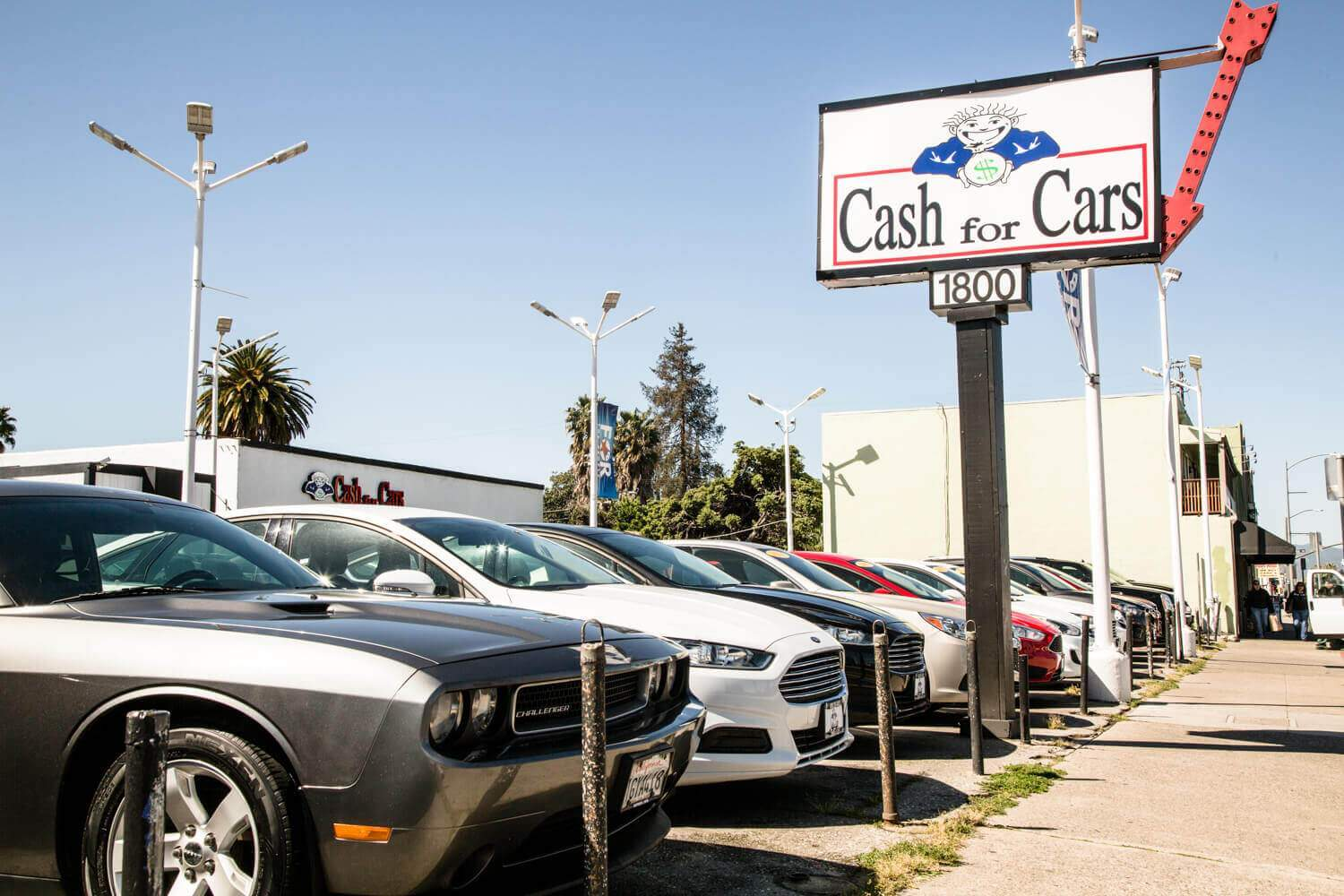 Cash for Cars-Dealer for the People