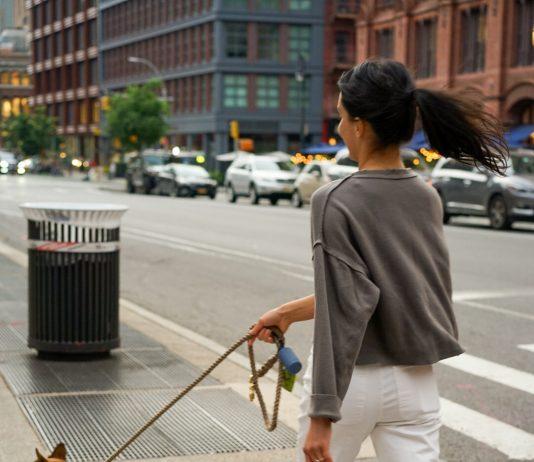5 Best Dog Walkers in Austin