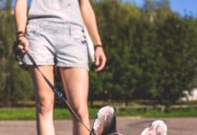 5 Best Dog Walkers in Columbus