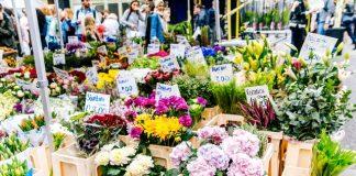 5 Best Florists in Dallas