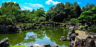 5 Best Landscaping Companies in Jacksonville
