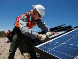 5 Best Solar Panels in Dallas