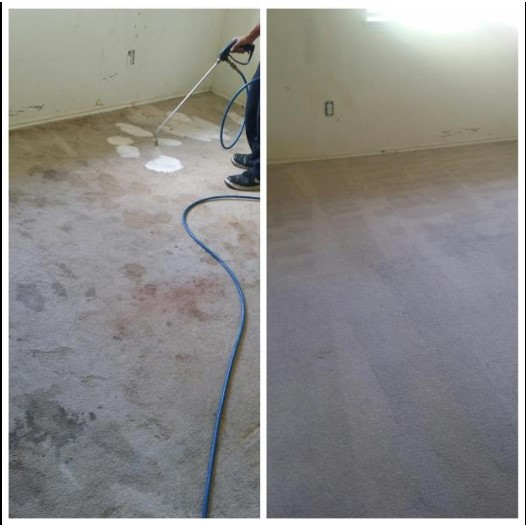 1 And Done Carpet Cleaning