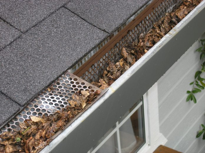 5 Best Gutter Maintenance in San Francisco