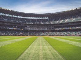 5 Best Stadiums in Phoenix