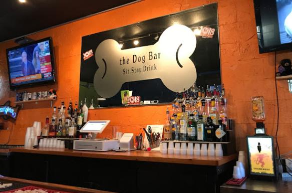 Dog Bar - Charlotte
