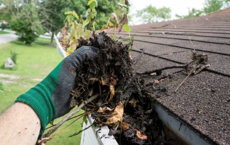 Silver Gutter Cleaning - Charlotte