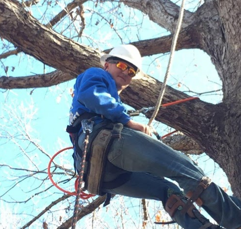 Veteran Residential Tree Service