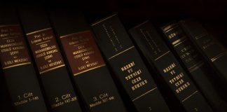 Best Constitutional Attorneys in New York