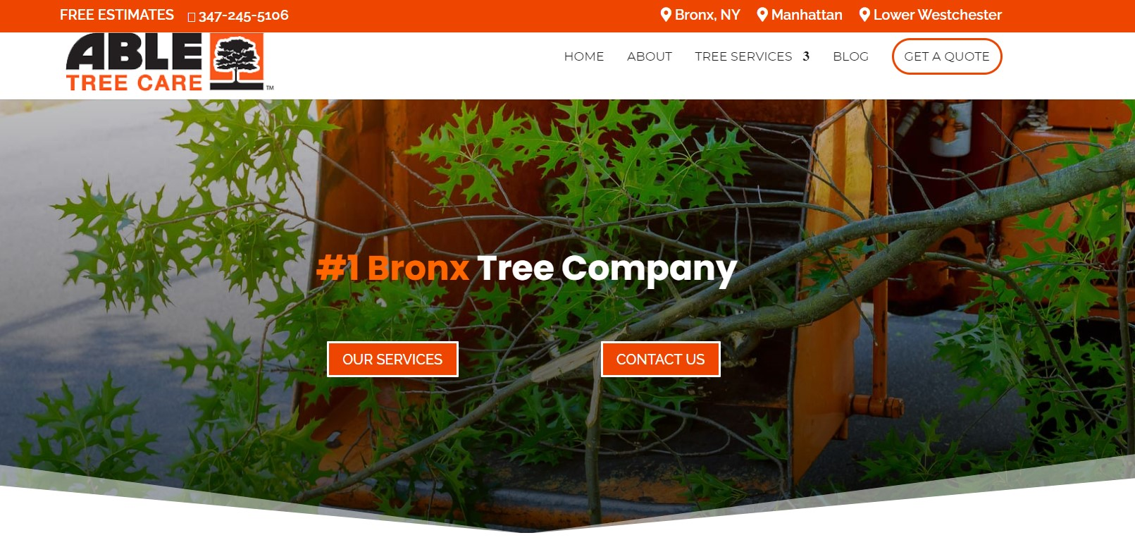 able tree service in new york