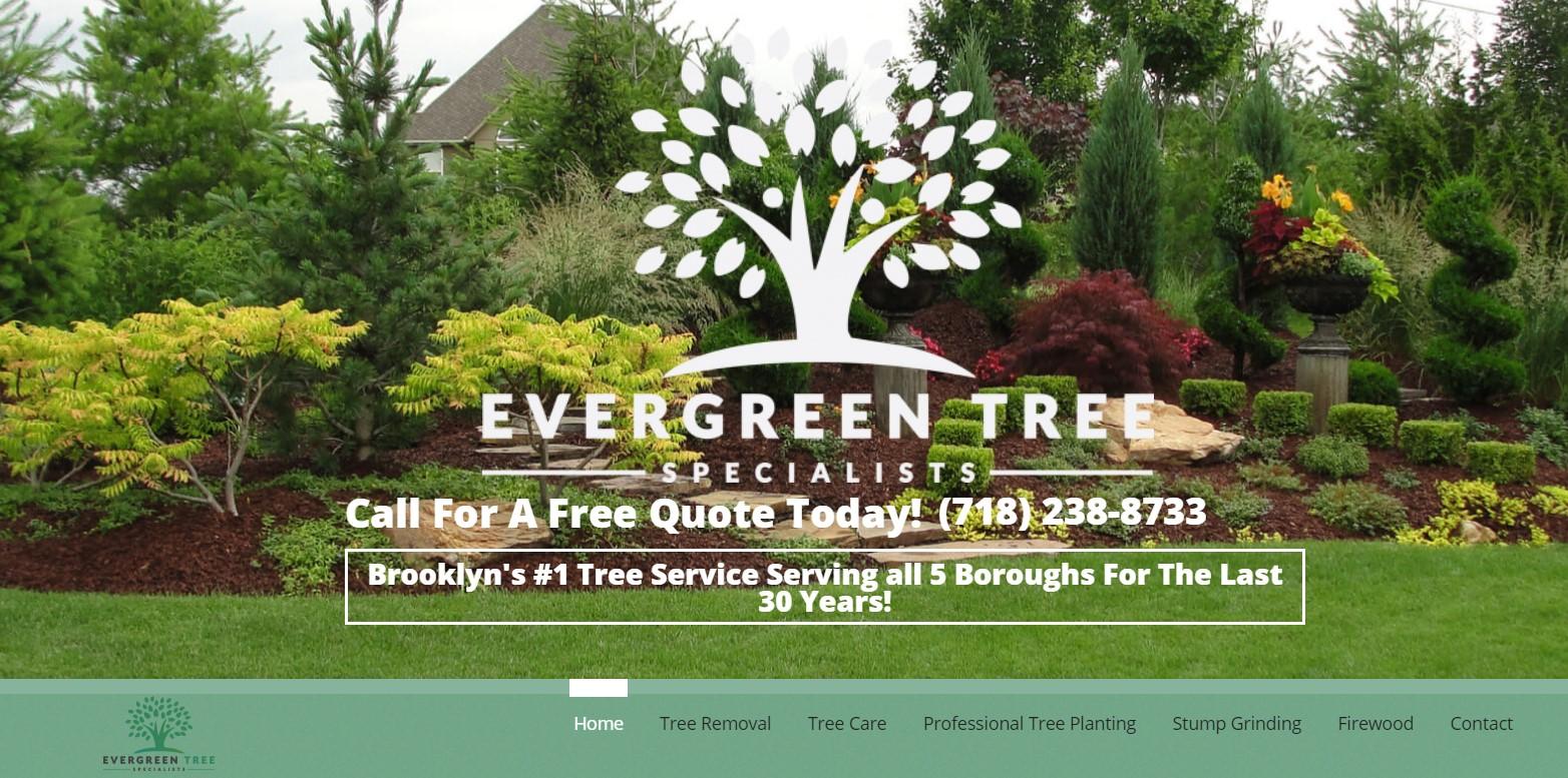 evergreen tree service in new york