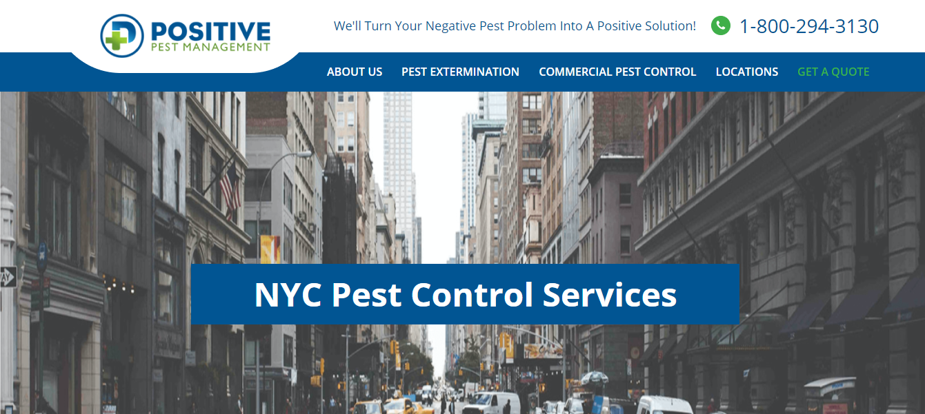 New York Best Exterminators