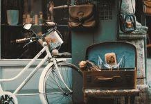 5 Best Antique Shops in San Francisco