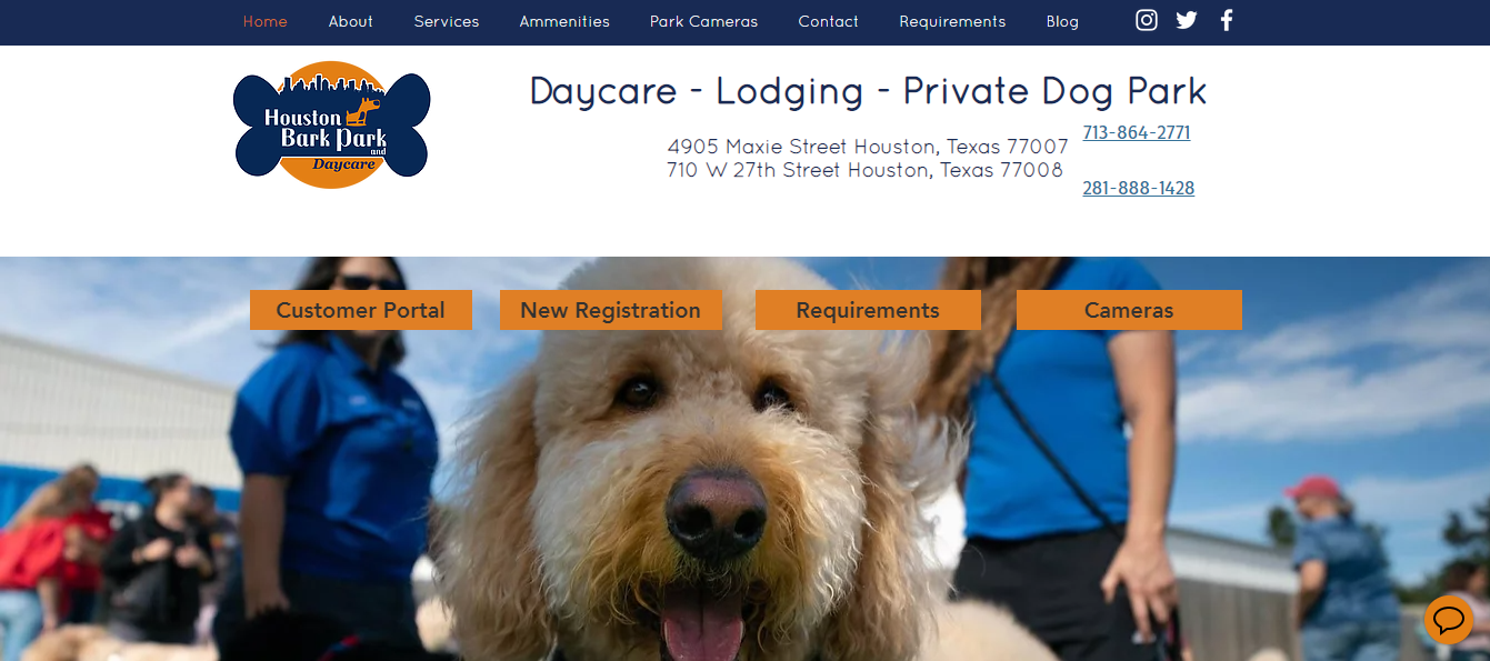 Best Doggy Daycare in Houston
