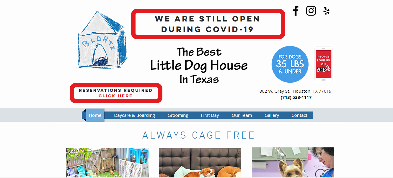 The Best Doggy Daycare in Houston