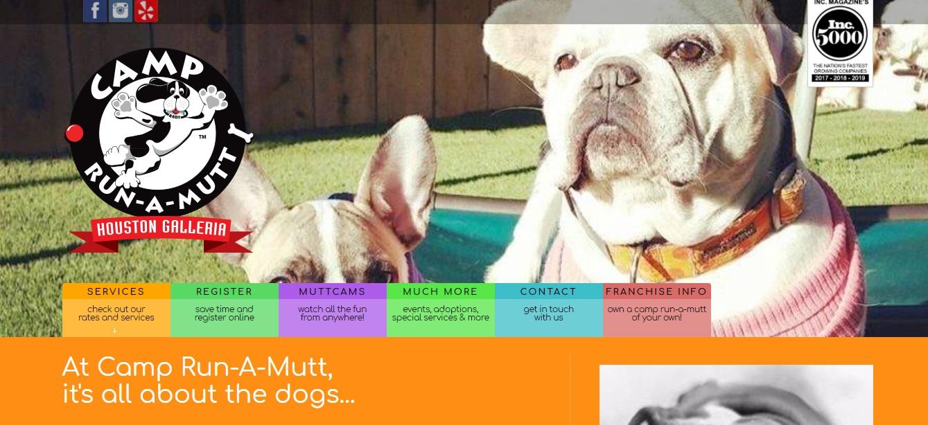 Houston's Best Doggy Daycare