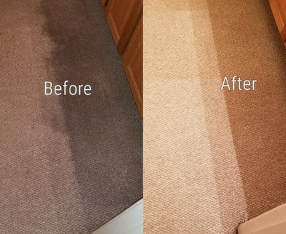Enviro Clean Carpet Cleaning
