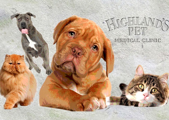 Highland's Pet Medical Clinic