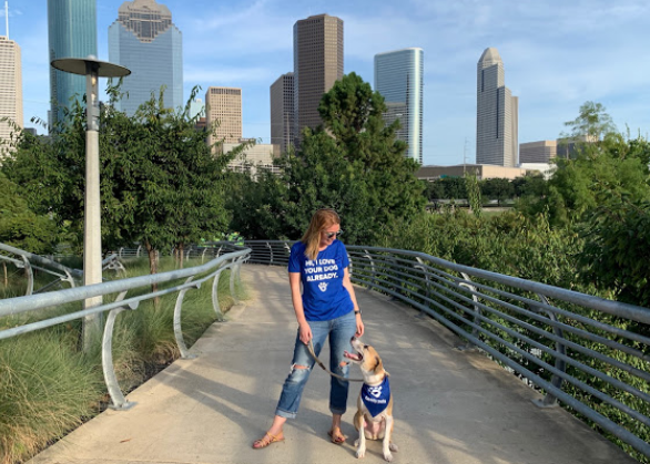 Barkly Pets Houston Dog Walkers