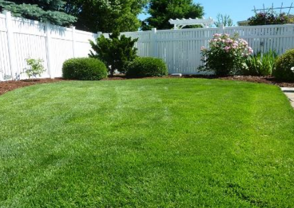Plano Fence Services