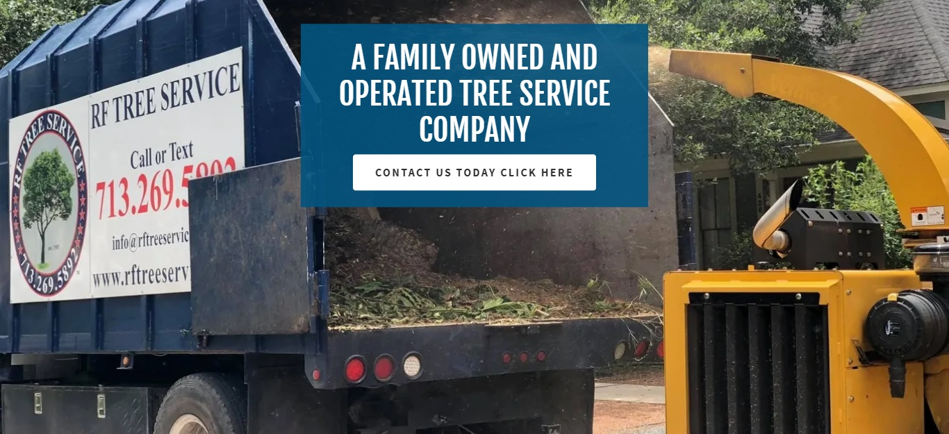 The Best Tree Services in Houston