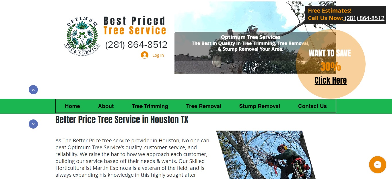 Best Tree Services in Houston