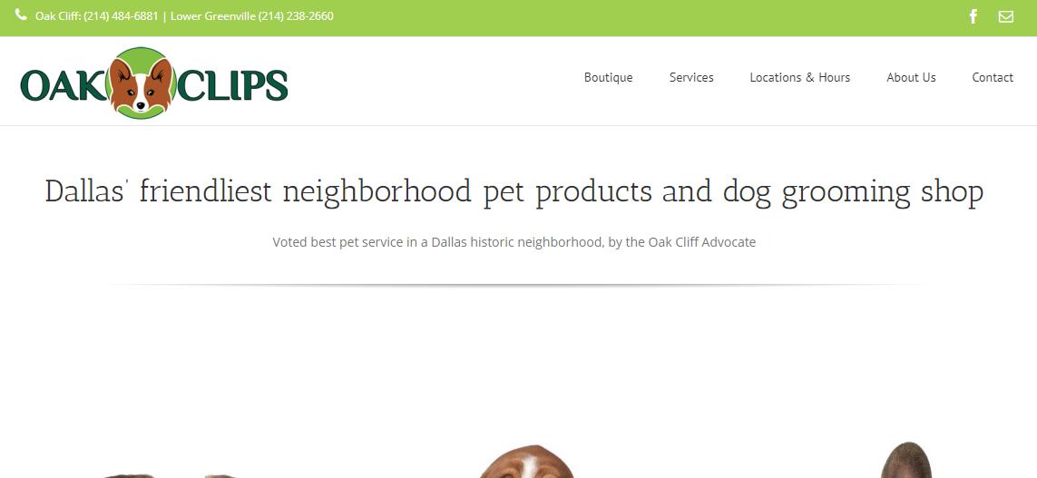 5 Best Dog Grooming in Dallas 5