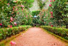 5 Best Gardeners in Philadelphia