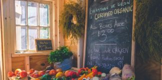 5 Best Health Food Stores in Indianapolis