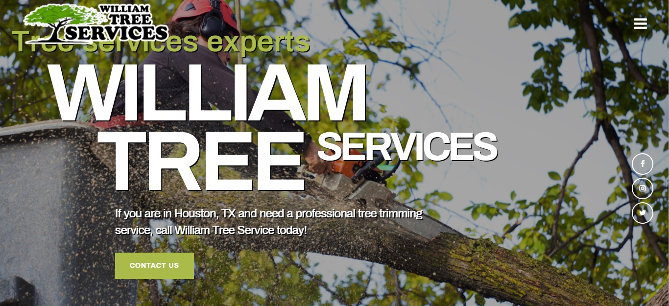 5 Best Tree Services in Houston