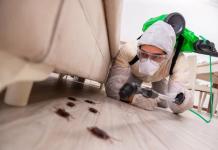 5 Best Exterminators in Houston