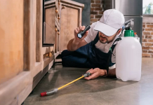 5 Best Pest Control Companies in Jacksonville