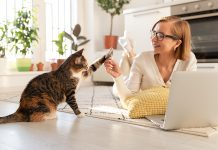 Best Pet Odor Removal Services in San Diego