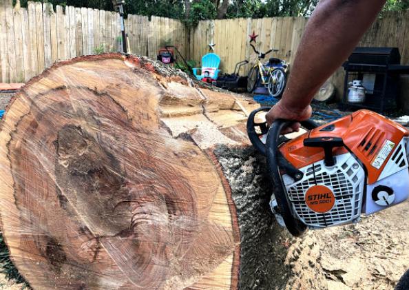 Vista Tree Service