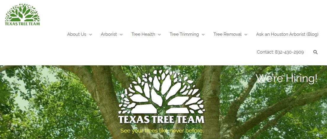 5 Best Arborists in Houston 2