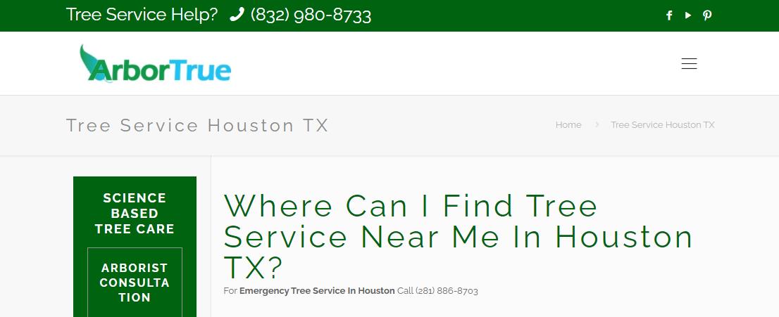 5 Best Arbori4sts in Houston