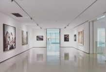 5 Best Art Galleries in Fort Worth