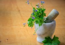 5 Best Naturopathy in San Francisco