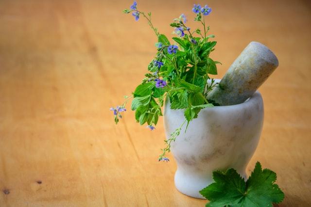 5 Best Naturopathy in San Francisco