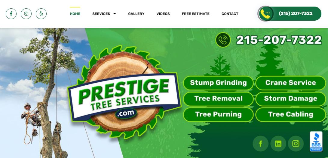 5 Best Arborists in Philadelphia 5
