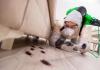 5 Best Exterminators in San Diego