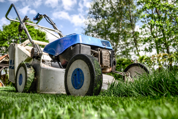 5 Best Gardeners in Houston